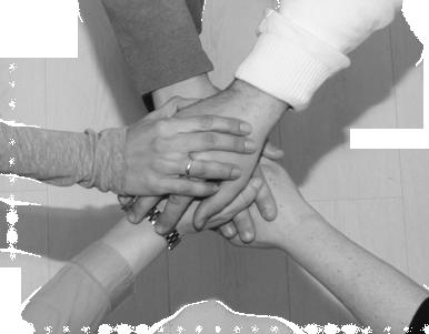 mediación y consultoria