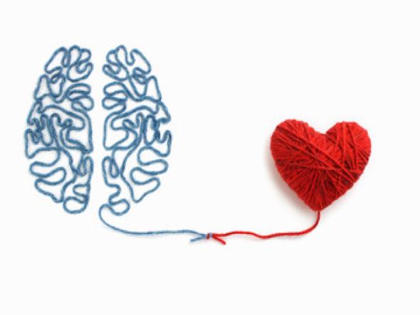 las dos partes del cerebro. Racional y creativa